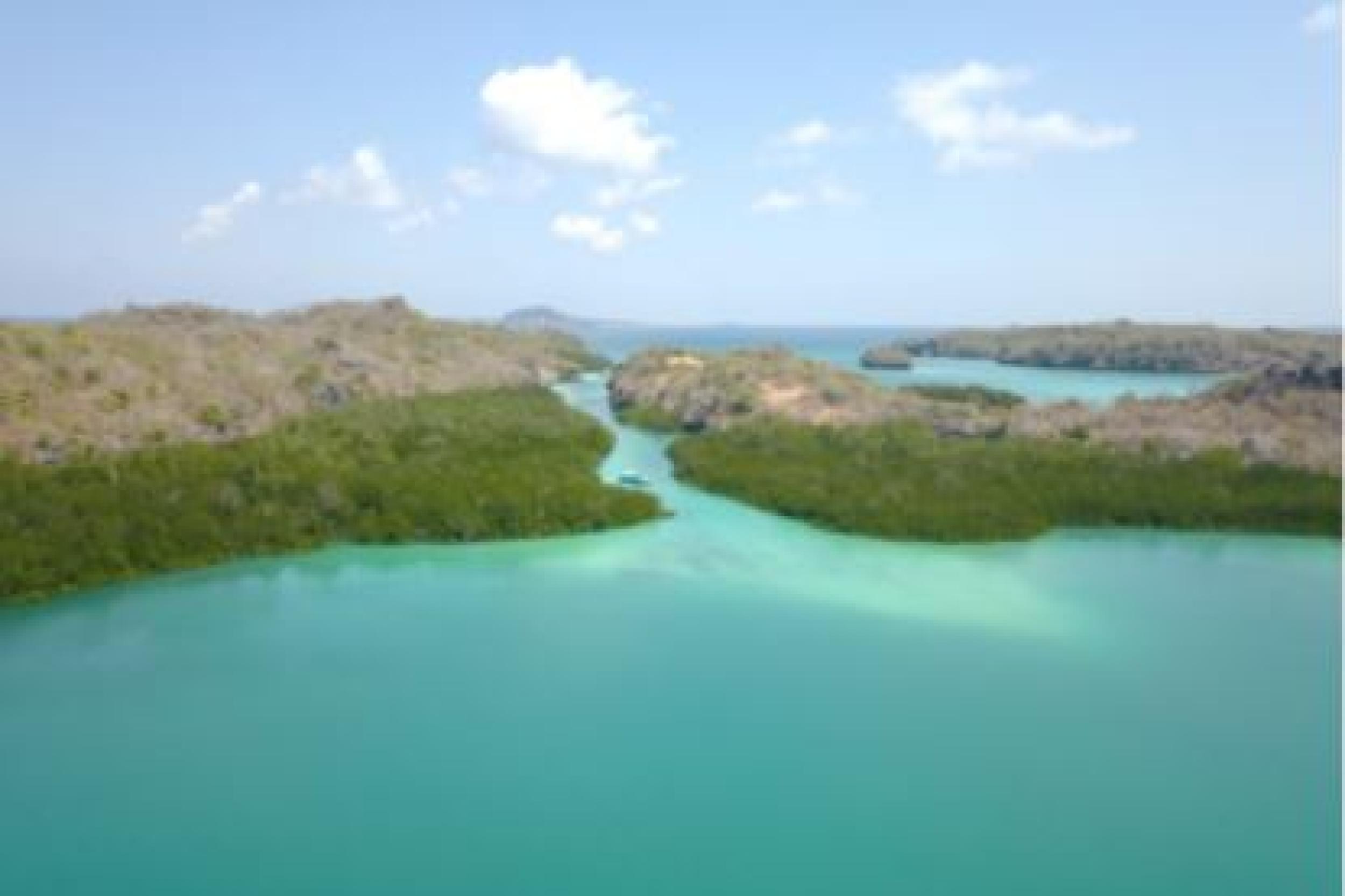 Rote Island Tour